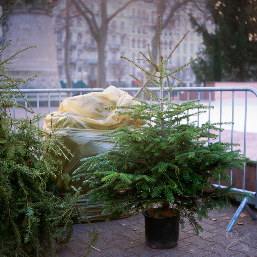 L'abandonné du 25 décembre