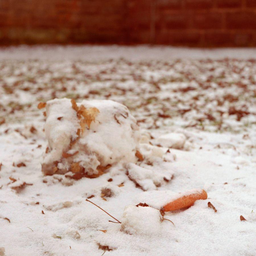Qui veut la peau de Mr Snowman ?