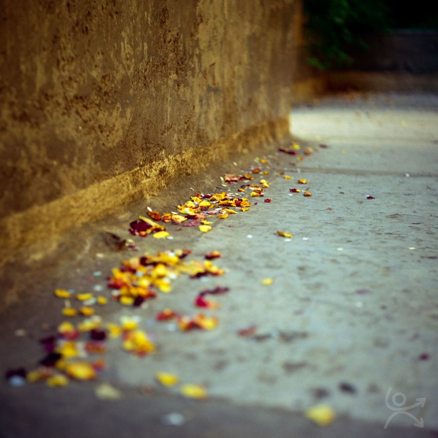 Rue, empreinte de bonheur